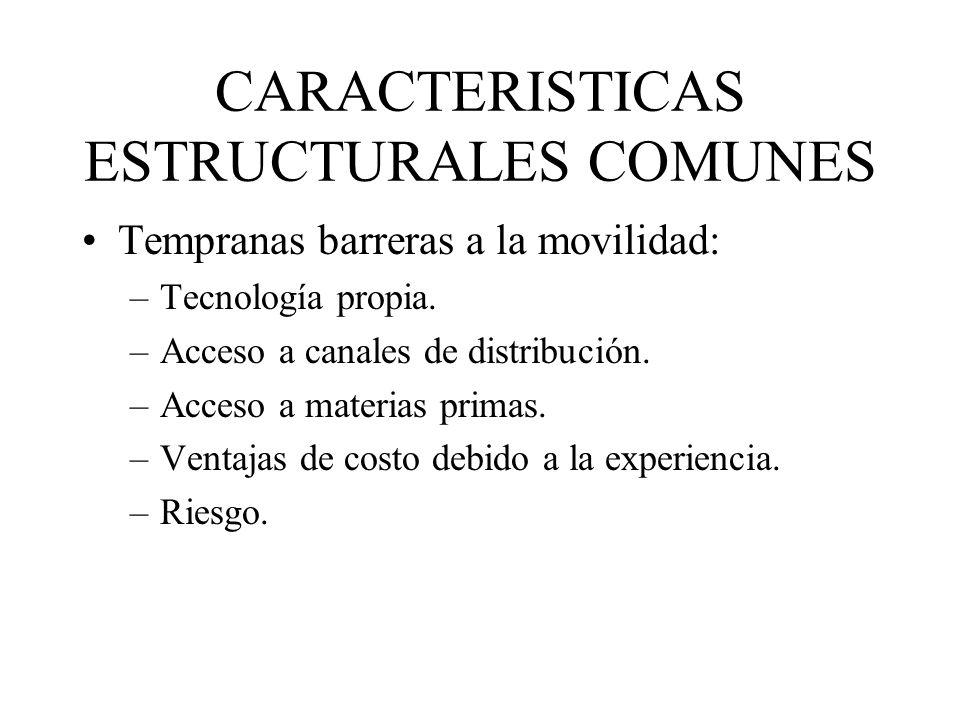 CARACTERISTICAS ESTRUCTURALES COMUNES Tempranas barreras a la movilidad: –Tecnología propia. –Acceso a canales de distribución. –Acceso a materias pri