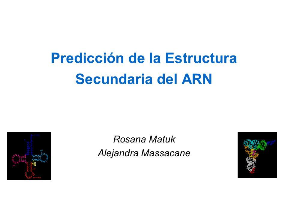 Predicción de la Estructura Secundaria del ARN Rosana Matuk Alejandra Massacane