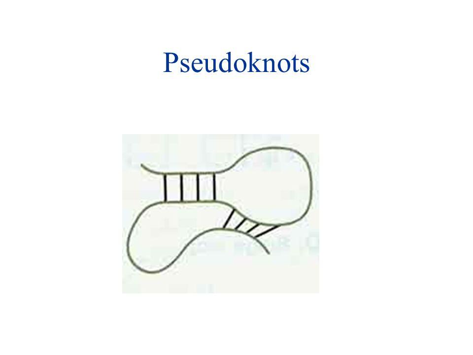 Pseudoknots