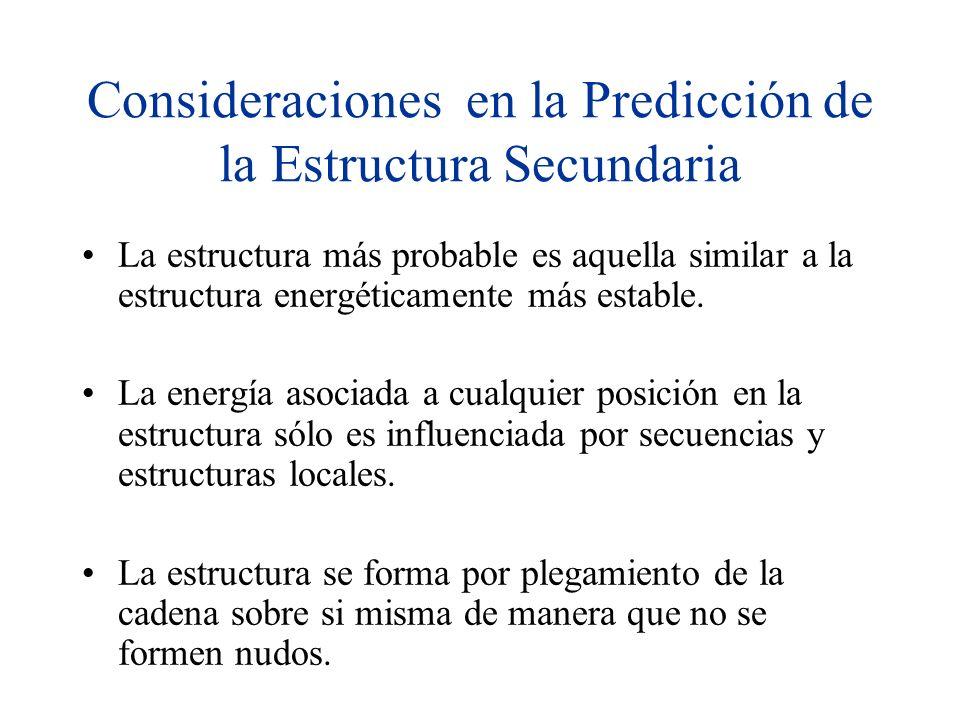 Consideraciones en la Predicción de la Estructura Secundaria La estructura más probable es aquella similar a la estructura energéticamente más estable.