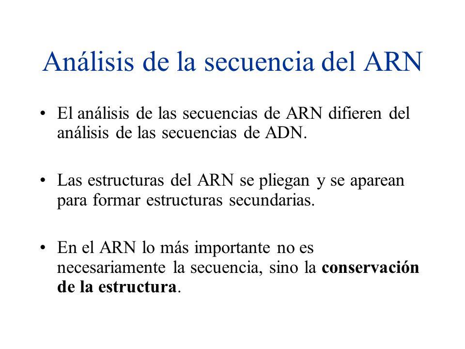 Análisis de la secuencia del ARN El análisis de las secuencias de ARN difieren del análisis de las secuencias de ADN. Las estructuras del ARN se plieg