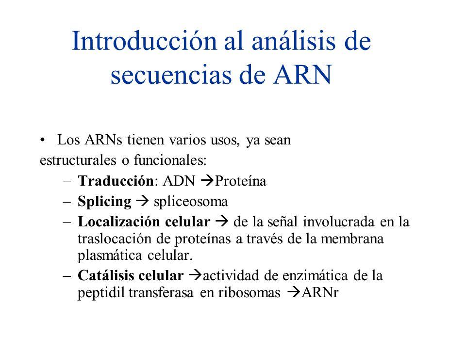 Introducción al análisis de secuencias de ARN Los ARNs tienen varios usos, ya sean estructurales o funcionales: –Traducción: ADN Proteína –Splicing sp