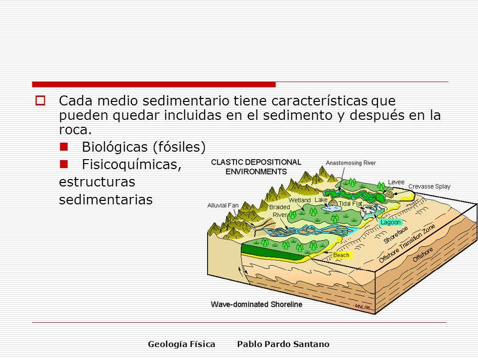 Geología Física Pablo Pardo Santano Cada medio sedimentario tiene características que pueden quedar incluidas en el sedimento y después en la roca. Bi