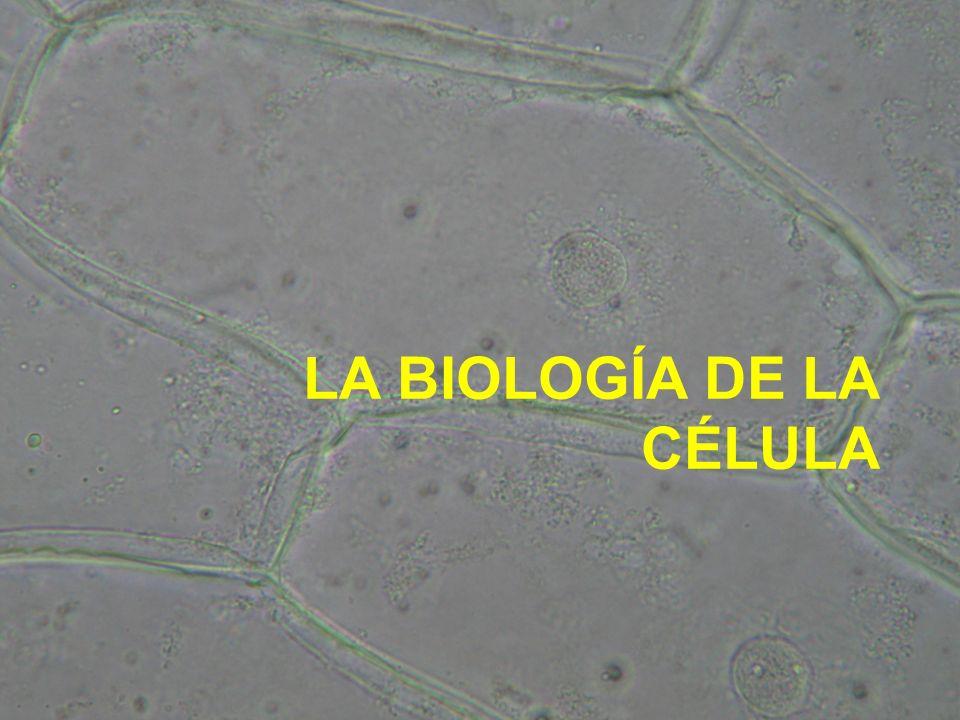 LA BIOLOGÍA DE LA CÉLULA