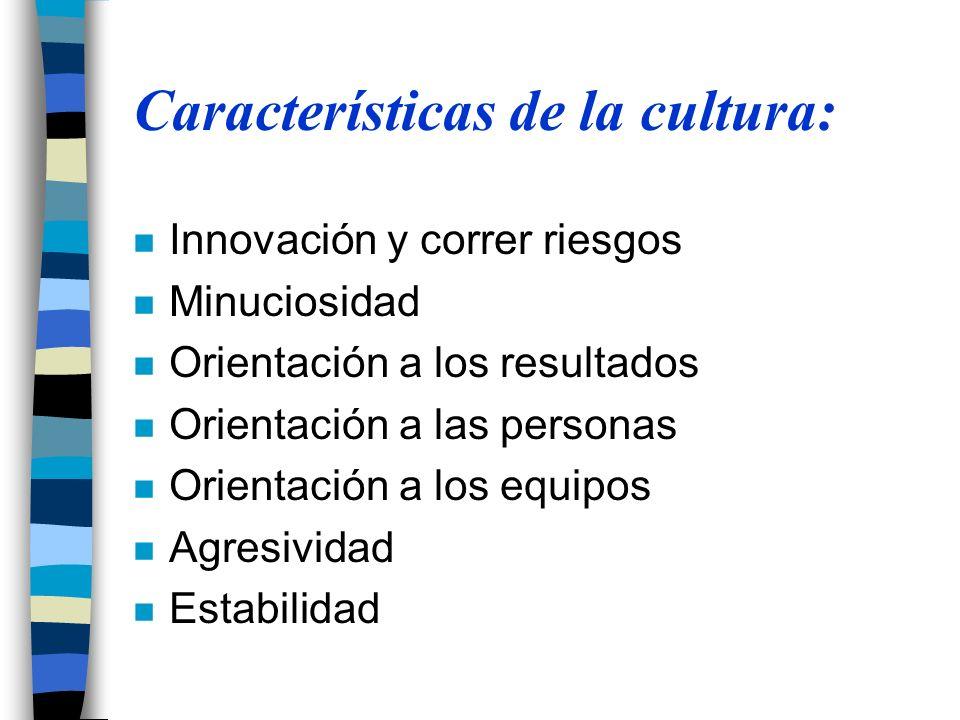 Características de la cultura: n Innovación y correr riesgos n Minuciosidad n Orientación a los resultados n Orientación a las personas n Orientación a los equipos n Agresividad n Estabilidad