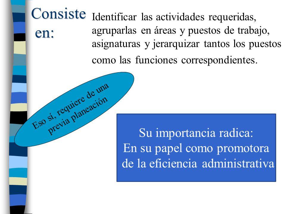 Consiste en: en: Identificar las actividades requeridas, agruparlas en áreas y puestos de trabajo, asignaturas y jerarquizar tantos los puestos como las funciones correspondientes.