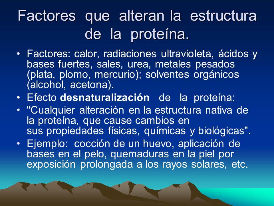Factores que alteran la estructura de la proteína. Factores: calor, radiaciones ultravioleta, ácidos y bases fuertes, sales, urea, metales pesados (pl
