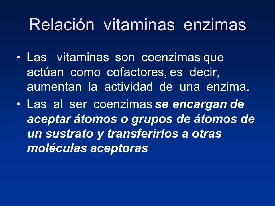 Relación vitaminas enzimas Las vitaminas son coenzimas que actúan como cofactores, es decir, aumentan la actividad de una enzima. Las al ser coenzimas