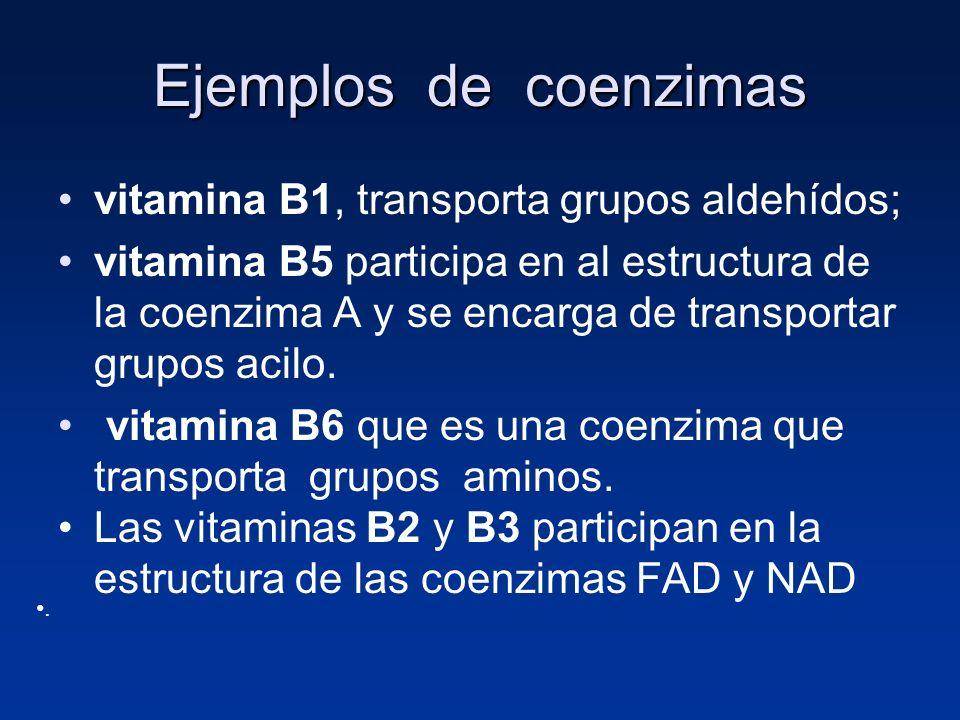 Ejemplos de coenzimas vitamina B1, transporta grupos aldehídos; vitamina B5 participa en al estructura de la coenzima A y se encarga de transportar gr