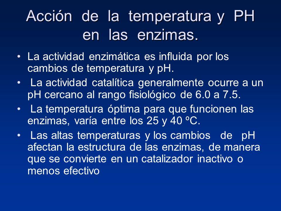 Acción de la temperatura y PH en las enzimas. La actividad enzimática es influida por los cambios de temperatura y pH. La actividad catalítica general