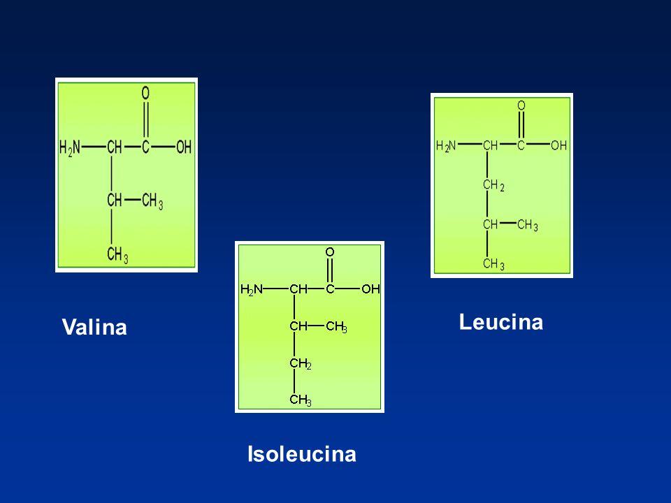 Ejemplos de aminoácidos no esenciales Alanina Estructura química de aminoácidos Interviene en el metabolismo de la glucosa.