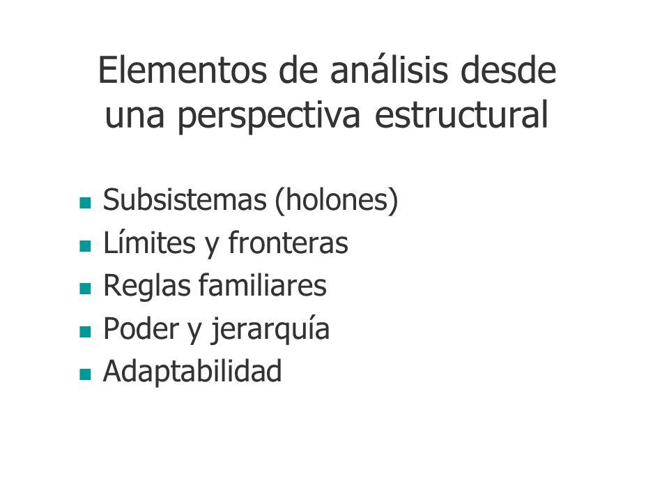 Elementos de análisis desde una perspectiva estructural Subsistemas (holones) Límites y fronteras Reglas familiares Poder y jerarquía Adaptabilidad
