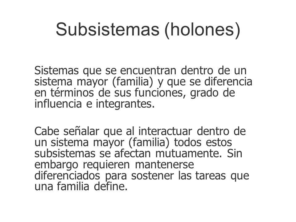 Subsistemas (holones) Sistemas que se encuentran dentro de un sistema mayor (familia) y que se diferencia en términos de sus funciones, grado de influ
