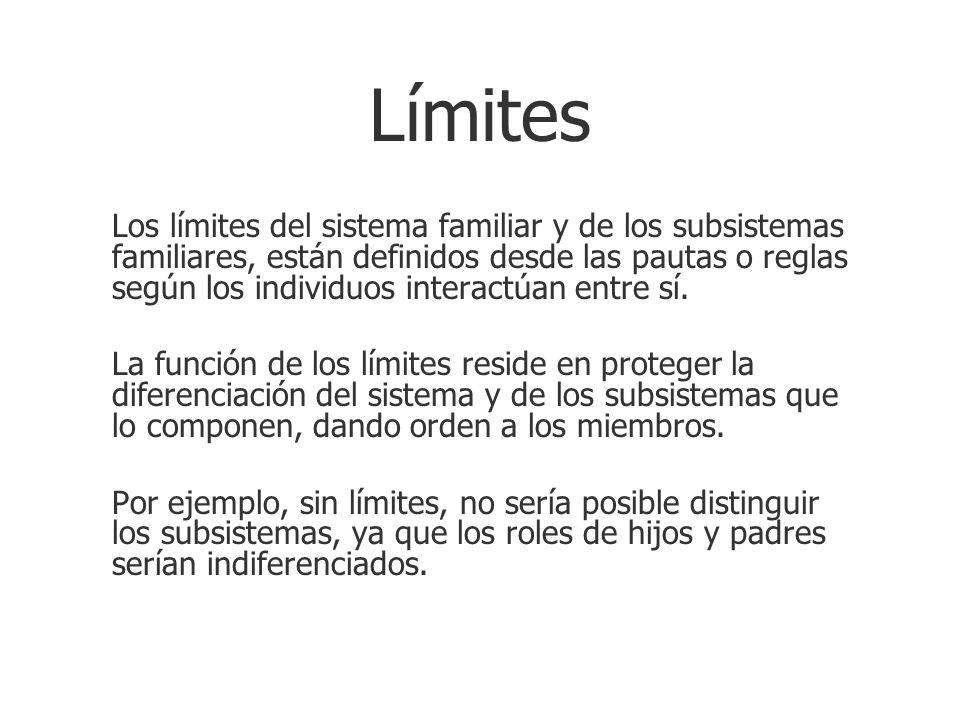 Límites Los límites del sistema familiar y de los subsistemas familiares, están definidos desde las pautas o reglas según los individuos interactúan e