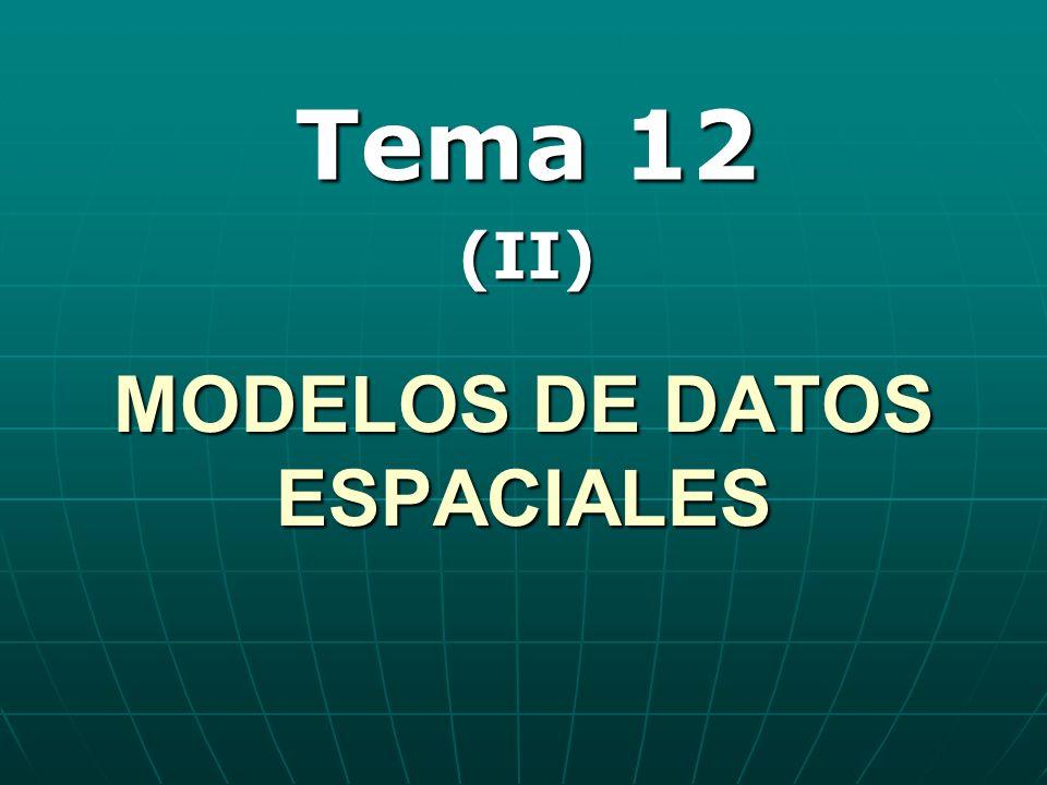 MODELOS DE DATOS ESPACIALES Tema 12 (II)