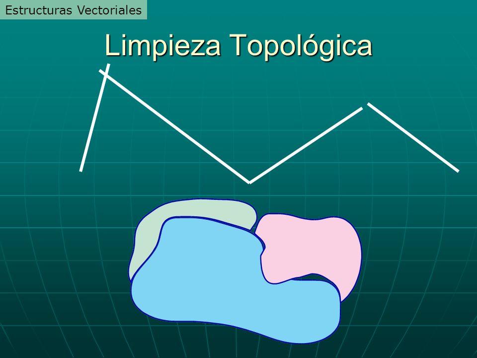 Limpieza Topológica Estructuras Vectoriales