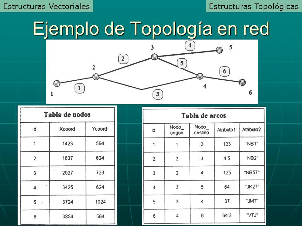 Ejemplo de Topología en red Estructuras TopológicasEstructuras Vectoriales