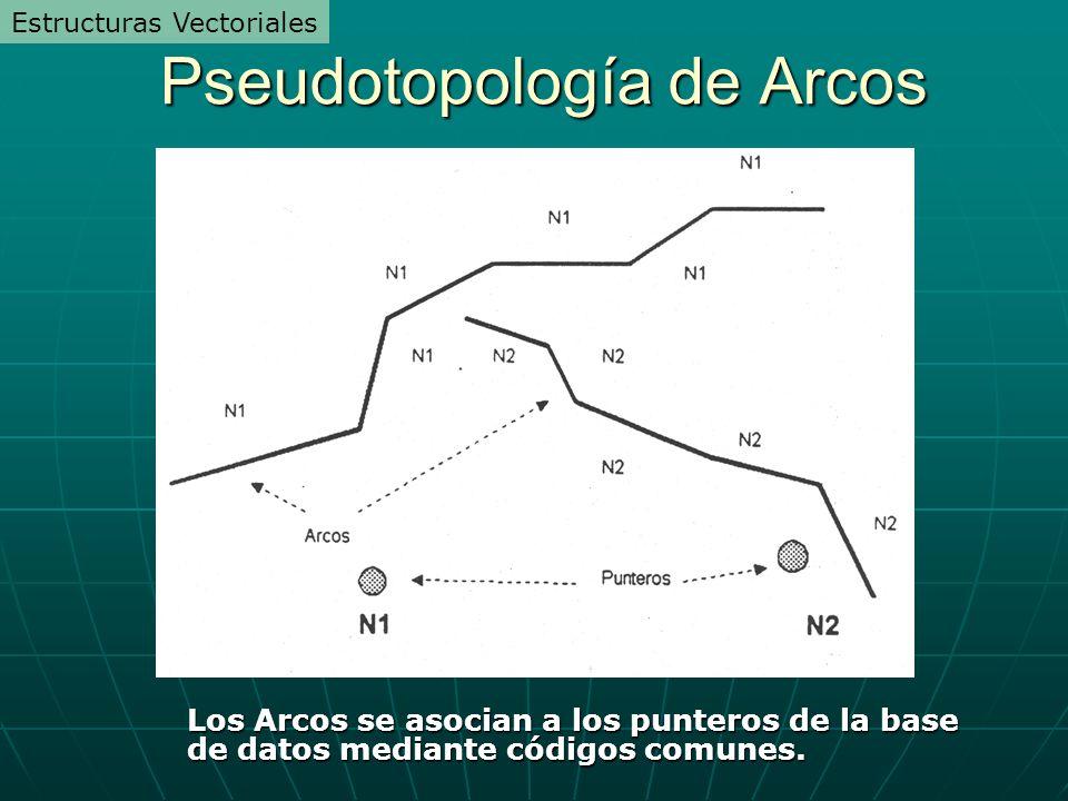 Pseudotopología de Arcos Los Arcos se asocian a los punteros de la base de datos mediante códigos comunes. Estructuras Vectoriales