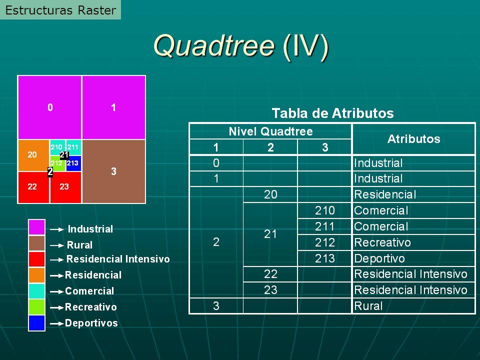 Quadtree (IV) Estructuras Raster