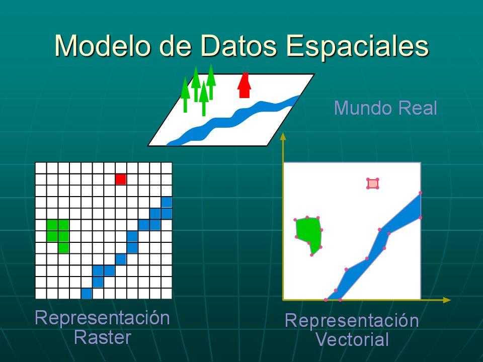 Estructura Espagueti (III) Tenemos: Tenemos: 4 Superficies4 Superficies 1 Línea1 Línea 1 Punto1 Punto 16 Vértices16 Vértices 17 Tramos17 Tramos Estructuras Vectoriales