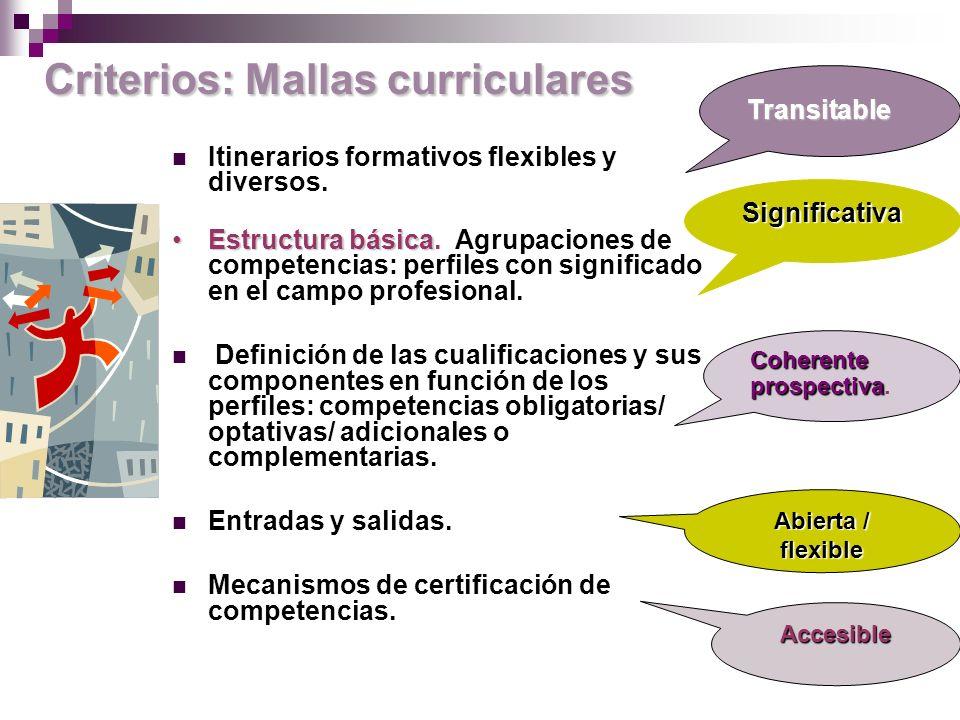 Criterios: Mallas curriculares Itinerarios formativos flexibles y diversos.