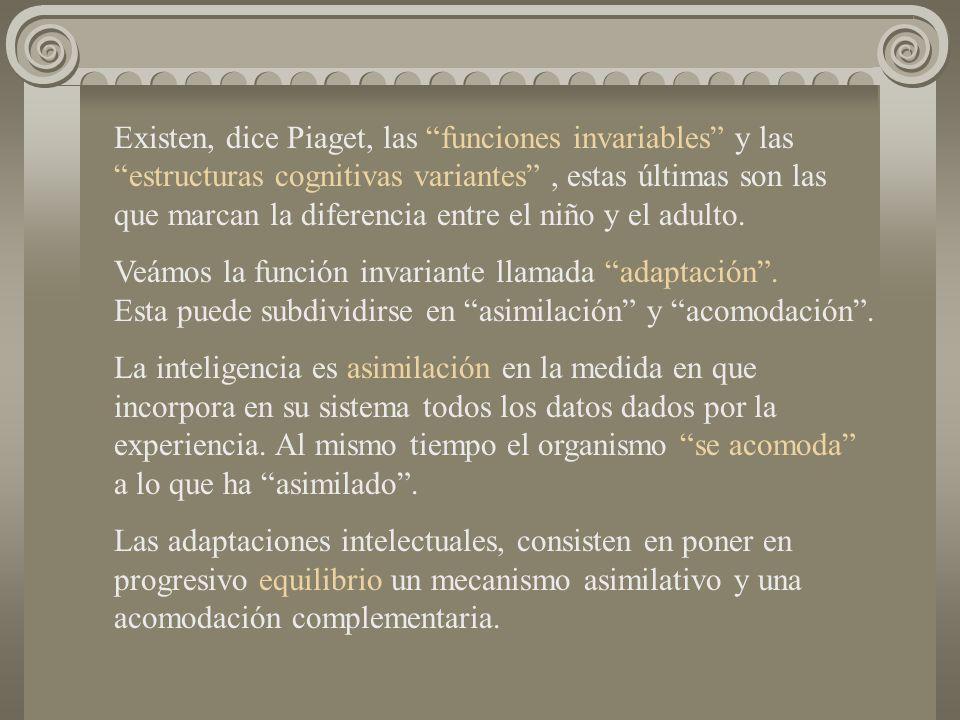 Existen, dice Piaget, las funciones invariables y las estructuras cognitivas variantes, estas últimas son las que marcan la diferencia entre el niño y