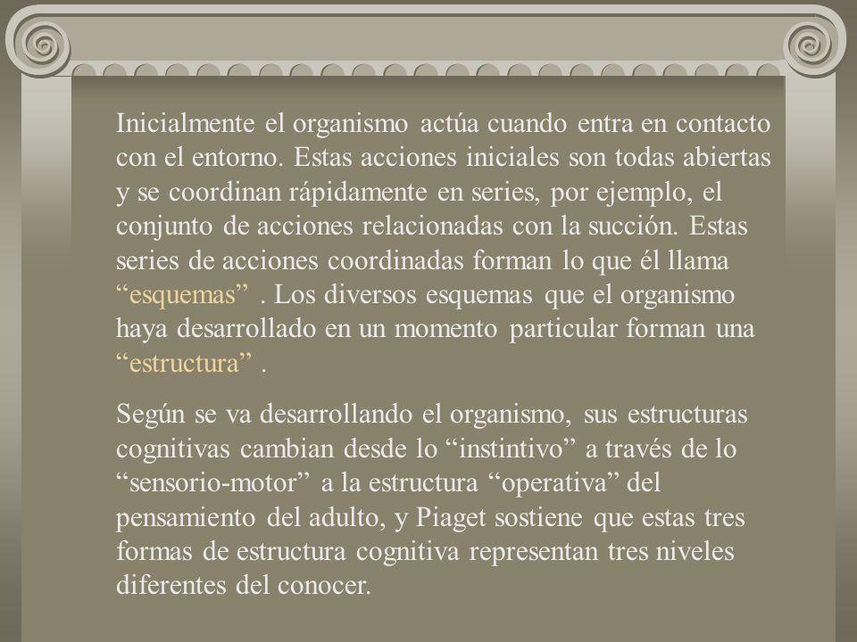 Inicialmente el organismo actúa cuando entra en contacto con el entorno. Estas acciones iniciales son todas abiertas y se coordinan rápidamente en ser