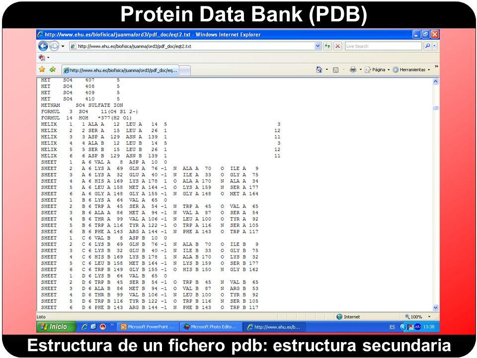 Protein Data Bank (PDB) Estructura de un fichero pdb: estructura secundaria