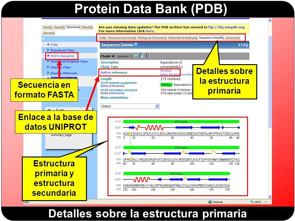 Protein Data Bank (PDB) Detalles sobre la estructura primaria Secuencia en formato FASTA Enlace a la base de datos UNIPROT Estructura primaria y estructura secundaria