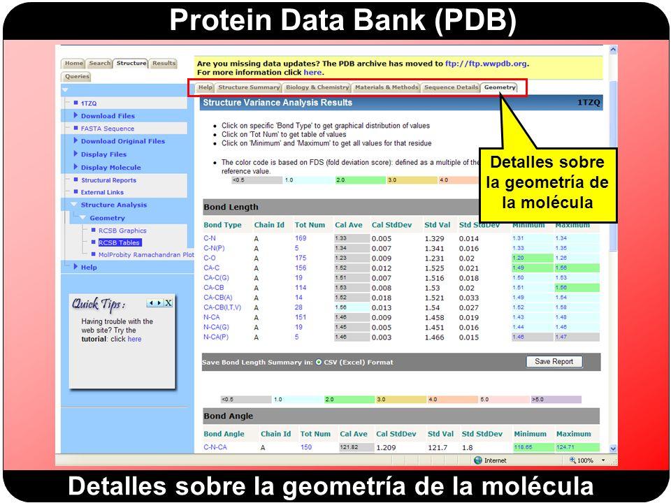 Protein Data Bank (PDB) Detalles sobre la geometría de la molécula