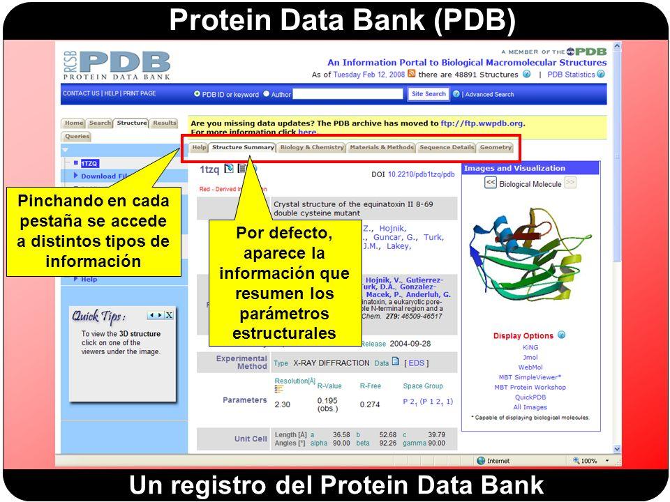 Protein Data Bank (PDB) Pinchando en cada pestaña se accede a distintos tipos de información Por defecto, aparece la información que resumen los parámetros estructurales Un registro del Protein Data Bank