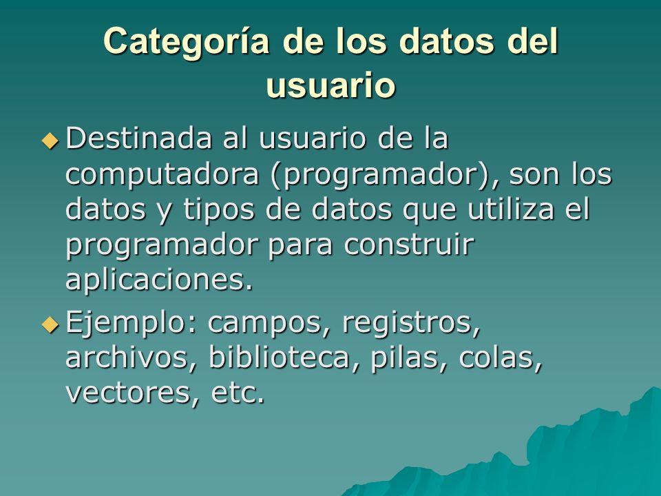 Categoría de los datos del usuario Destinada al usuario de la computadora (programador), son los datos y tipos de datos que utiliza el programador par