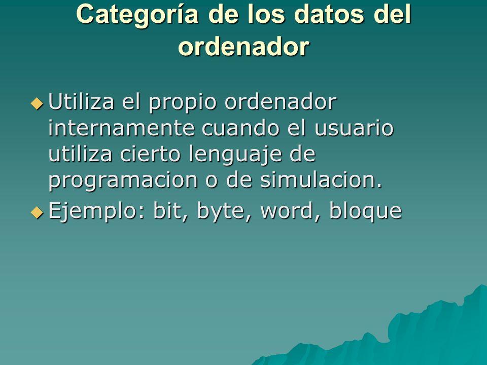 Categoría de los datos del ordenador Utiliza el propio ordenador internamente cuando el usuario utiliza cierto lenguaje de programacion o de simulacio