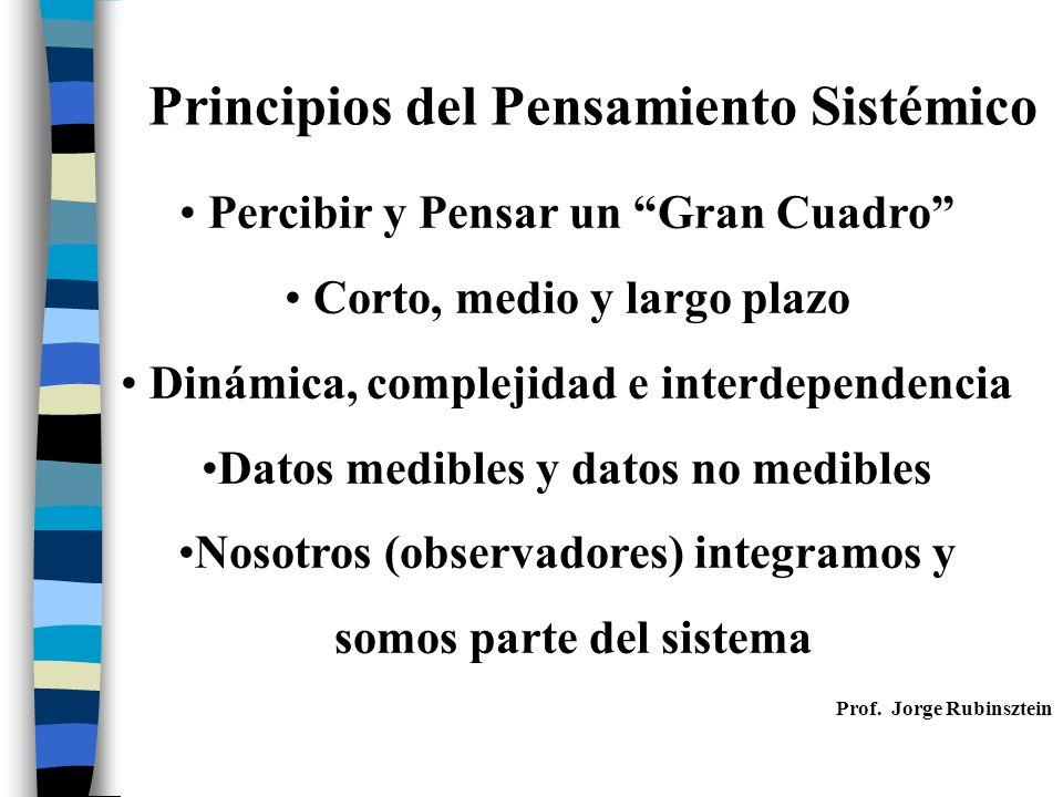 Percibir y Pensar un Gran Cuadro Corto, medio y largo plazo Dinámica, complejidad e interdependencia Datos medibles y datos no medibles Nosotros (observadores) integramos y somos parte del sistema Principios del Pensamiento Sistémico Prof.
