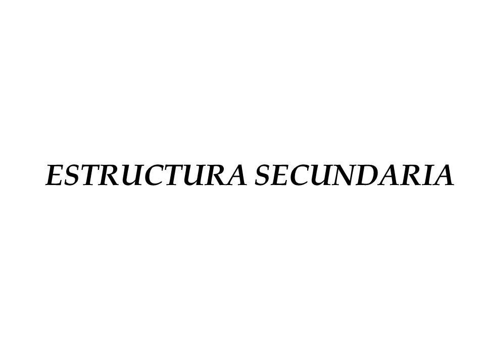 ESTRUCTURA SECUNDARIA