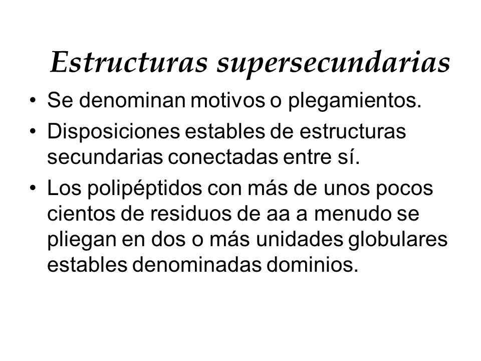 Estructuras supersecundarias Se denominan motivos o plegamientos. Disposiciones estables de estructuras secundarias conectadas entre sí. Los polipépti