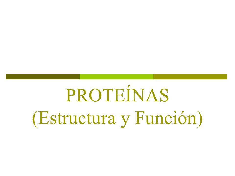 Historia Principio Fundamental La Estructura de la Proteina Ocasiona su Función.