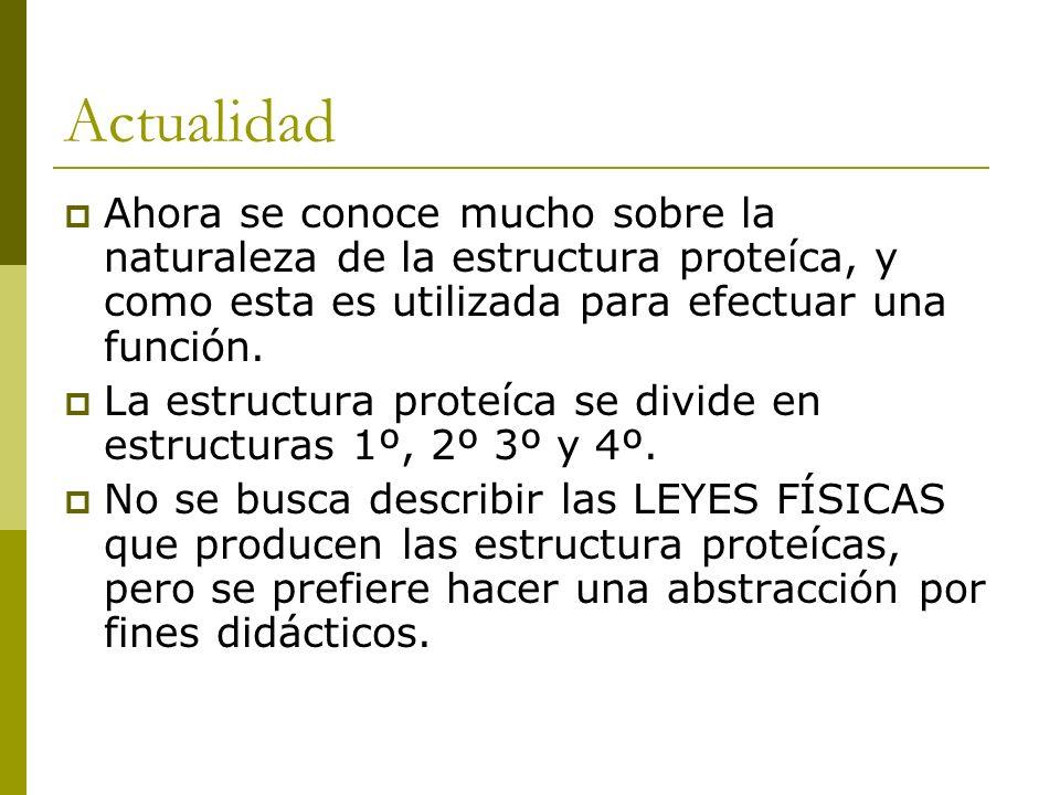 Estructuras supersecundarias Se denominan motivos o plegamientos.