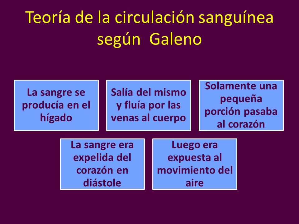Teoría de la circulación sanguínea según Galeno La sangre se producía en el hígado Salía del mismo y fluía por las venas al cuerpo Solamente una peque
