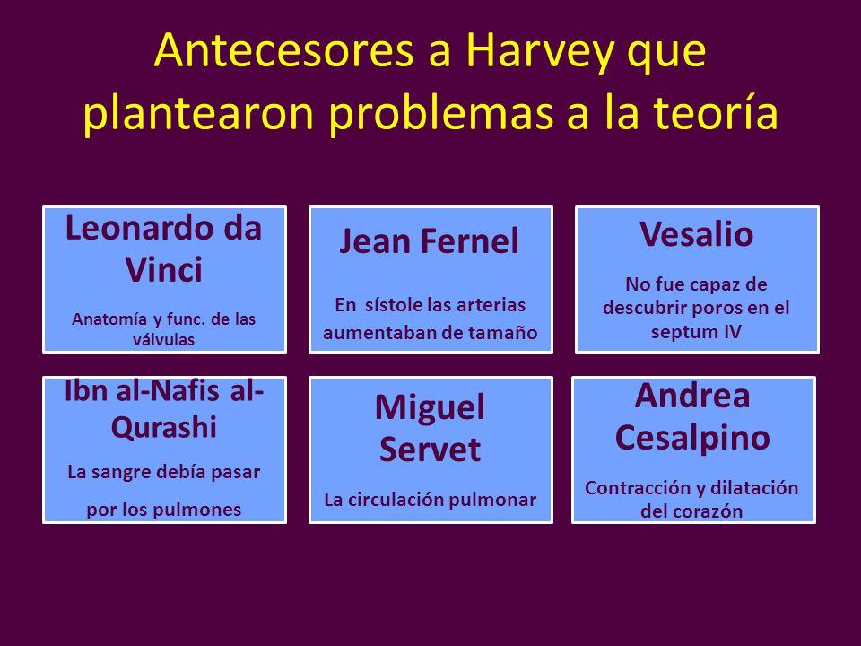 Antecesores a Harvey que plantearon problemas a la teoría Leonardo da Vinci Anatomía y func. de las válvulas Jean Fernel En sístole las arterias aumen