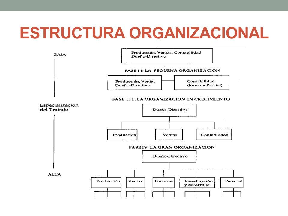 DEPARTAMENTALIZACIÓN POR CLIENTE La organización estructura sus actividades para interactuar con un grupo de clientes, empresas grandes o personas naturales ej.
