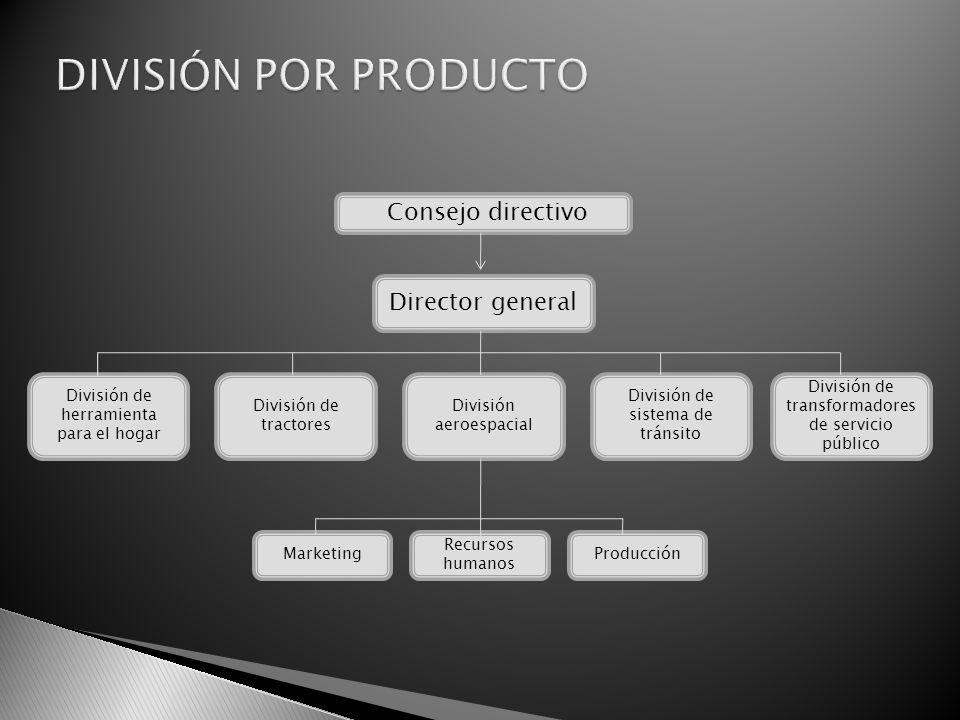 Consejo directivo División de tractores Director general Recursos humanos MarketingProducción División de transformadores de servicio público División