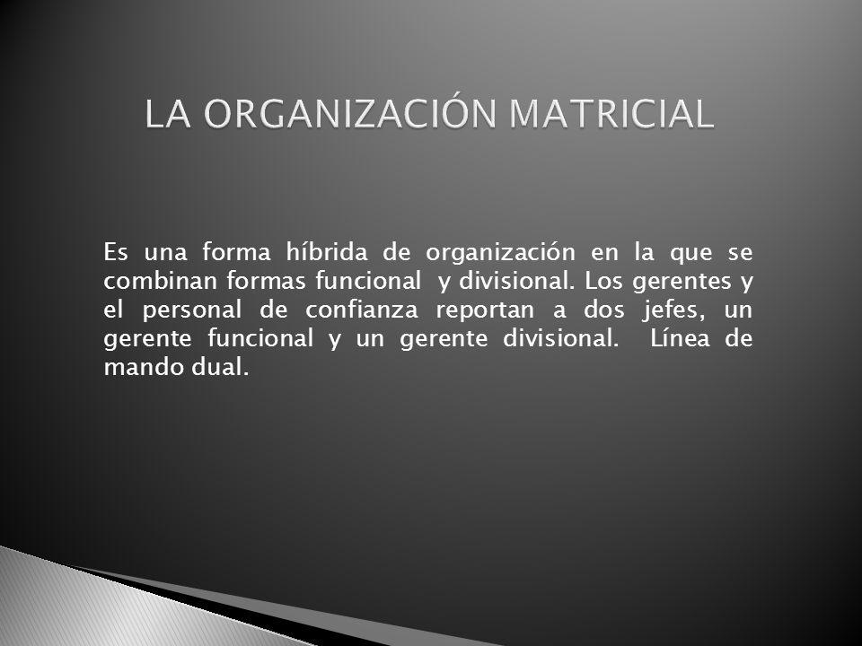 Es una forma híbrida de organización en la que se combinan formas funcional y divisional. Los gerentes y el personal de confianza reportan a dos jefes