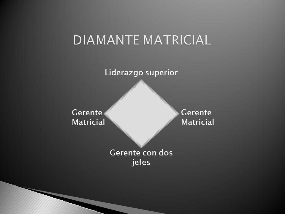 Liderazgo superior Gerente Matricial Gerente con dos jefes
