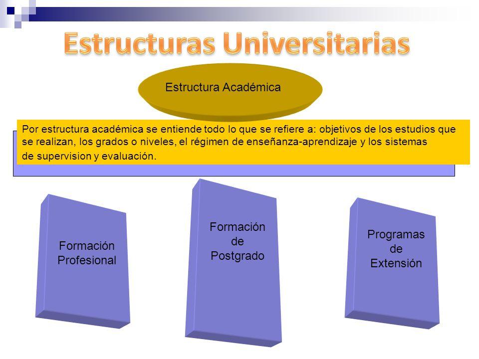 Por estructura académica se entiende todo lo que se refiere a: objetivos de los estudios que se realizan, los grados o niveles, el régimen de enseñanz