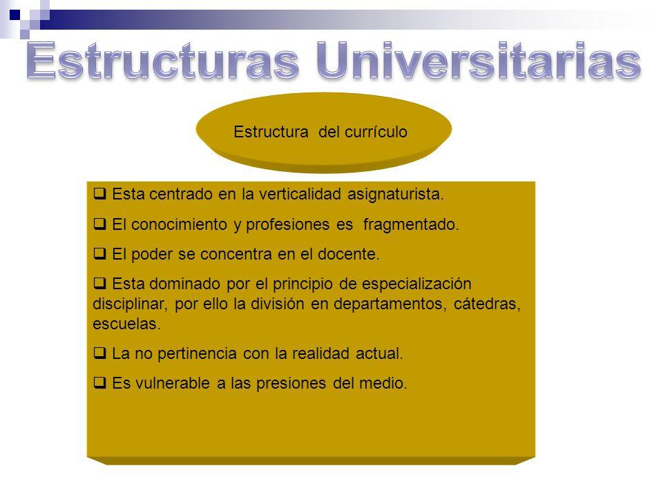 Estructura del currículo Esta centrado en la verticalidad asignaturista. El conocimiento y profesiones es fragmentado. El poder se concentra en el doc