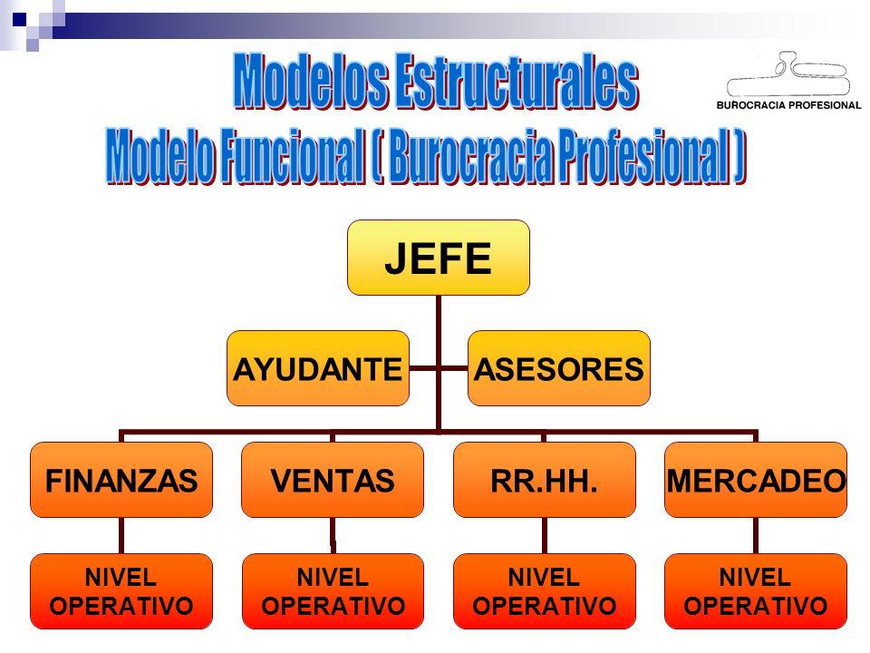 JEFE FINANZAS NIVEL OPERATIVO VENTAS NIVEL OPERATIVO RR.HH. NIVEL OPERATIVO MERCADEO NIVEL OPERATIVO AYUDANTEASESORES