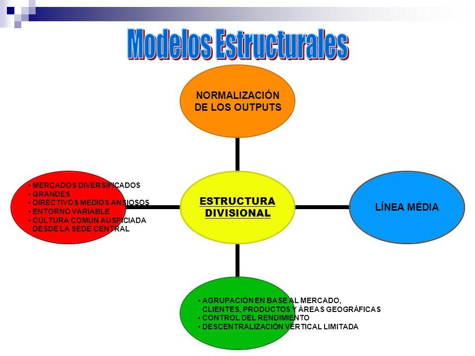 ESTRUCTURA DIVISIONAL NORMALIZACIÓN DE LOS OUTPUTS LÍNEA MÉDIA AGRUPACIÓN EN BASE AL MERCADO, CLIENTES, PRODUCTOS Y ÁREAS GEOGRÁFICAS CONTROL DEL REND
