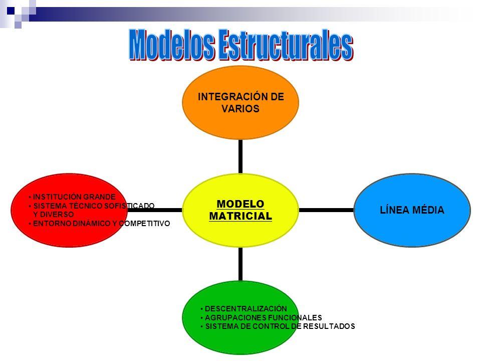 MODELO MATRICIAL INTEGRACIÓN DE VARIOS LÍNEA MÉDIA DESCENTRALIZACIÓN AGRUPACIONES FUNCIONALES SISTEMA DE CONTROL DE RESULTADOS INSTITUCIÓN GRANDE SIST