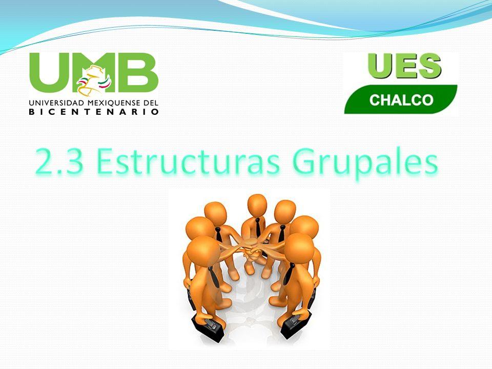 La estructura es la organización interna y los propios procedimientos grupales.